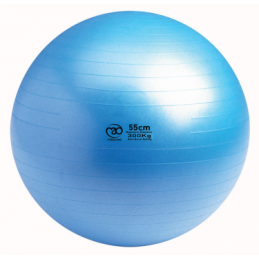 Swiss Gym Ball 300kg