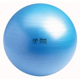 Swiss Gym Ball 300kg