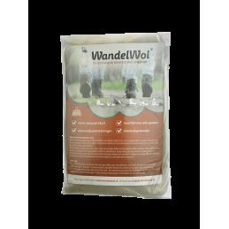 WandelWol, van alpaca wol...